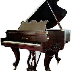 Charles Walter 175 Grand Piano Hand Carved