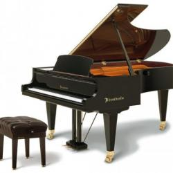 Bosendorfer 225 Grand In Stock, Saint Paul, MN